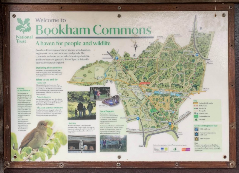 Detailed-map-of-Bookham-commons-walks-and-ponds