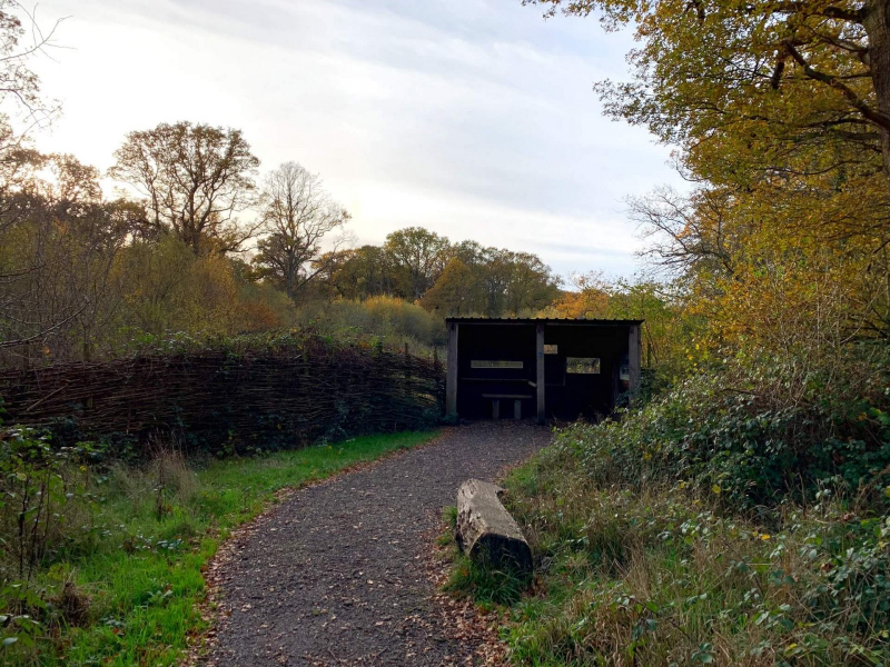bird-hide-at-bookham-commons