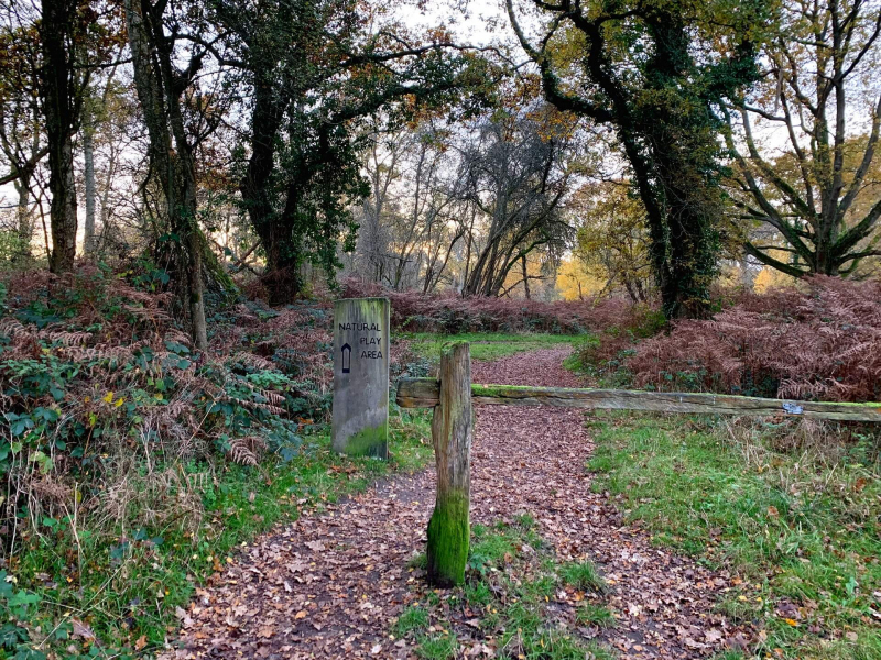 entrance-to-childrens-play-area-bookham-commons
