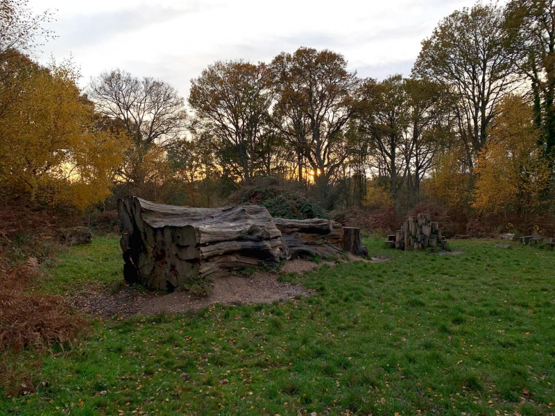 old-log-childrens-play-area-bookham-commons