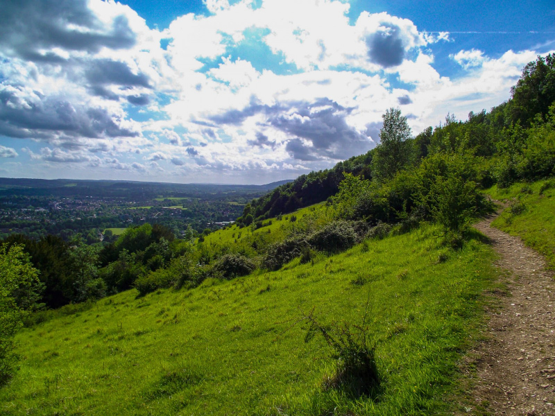 Box-hill-path-with-view-sunny-day