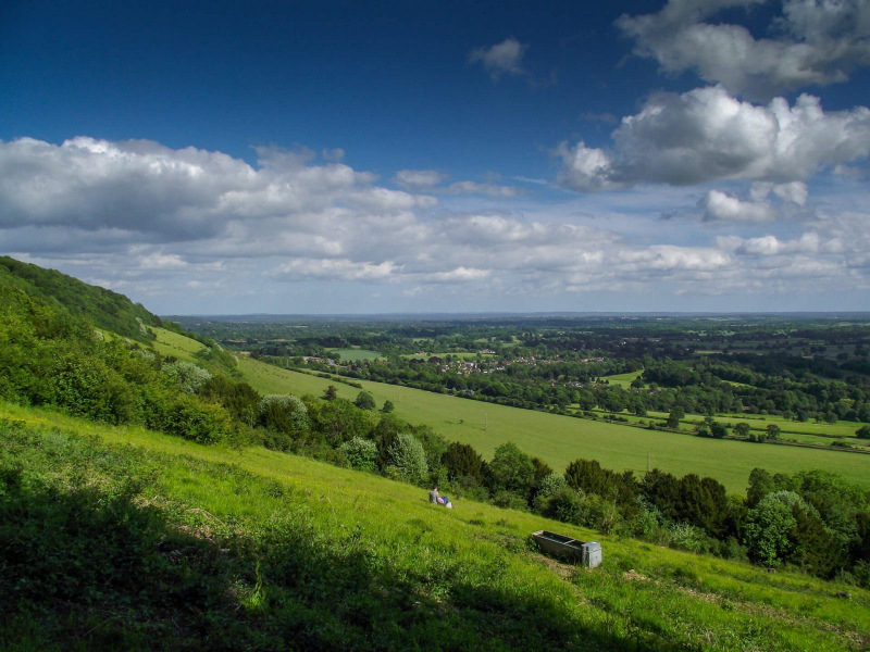 Box-hill-sunny-day-view-from-walks