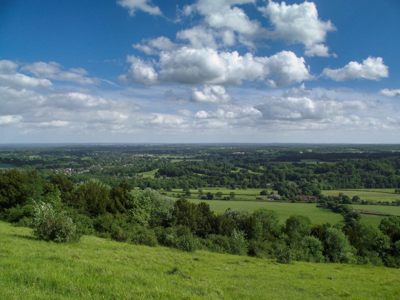 Box-hill-sunny-day-view