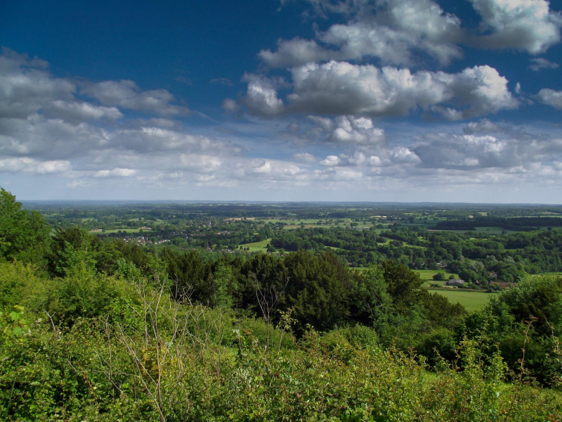 Box-hill-view-over-surrey-sunny-day