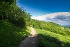 Box-hill-path-sunny-day-hills