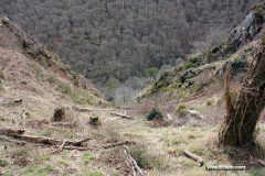 Views-from-walk-near-Castle-Drogo