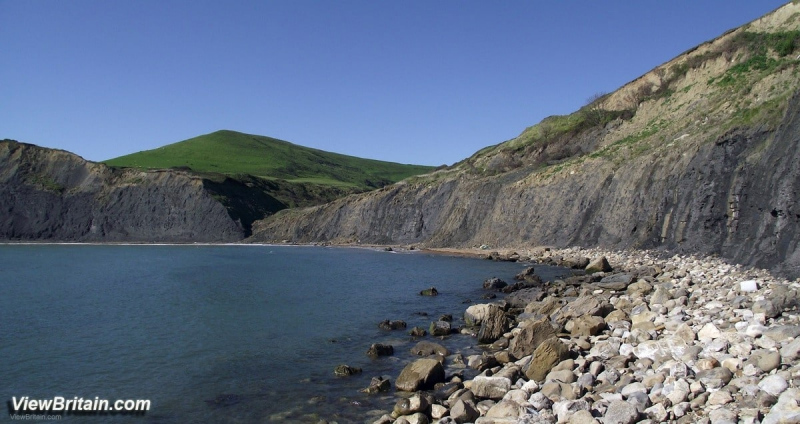 Clay-Cliffs-Fossils-in-the-Foreshore-of-Chapmans-Pool-Dorset-England