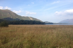 Beautiful-shorelines-of-Derwentwater-Lake-Keswick