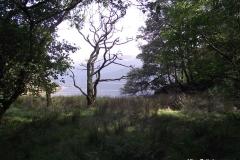 Walk-around-the-Derwentwater-lake-Keswick-Lake-District