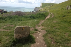 coastal-path-near-durdle-door-beach-min