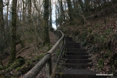 1_Stairs-on-the-Lydford-Gorge-trail