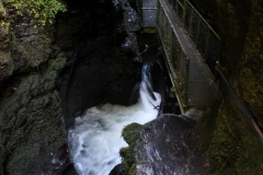 1_path-leading-to-devils-couldron-at-lydford-gorge