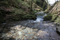 1_river-lyd-at-lydford-gorge