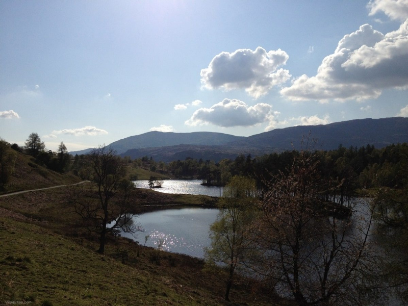 view-of-tarn-hows-lake-from-higher-ground-2