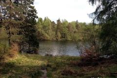 photo-of-Tarn-Hows-Lake-Lake-District