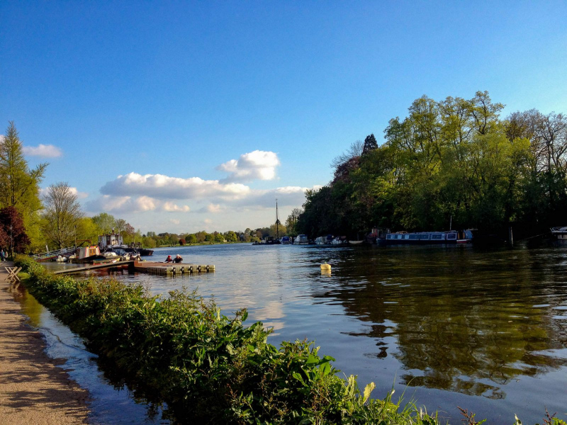 river-thames-high-tide-richmond-riverside