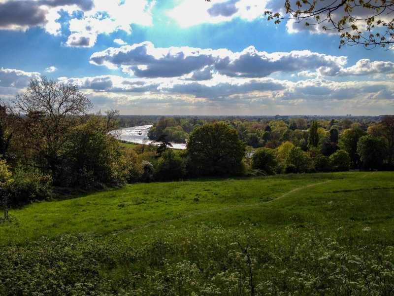 view-of-river-thames-richmond-terrace