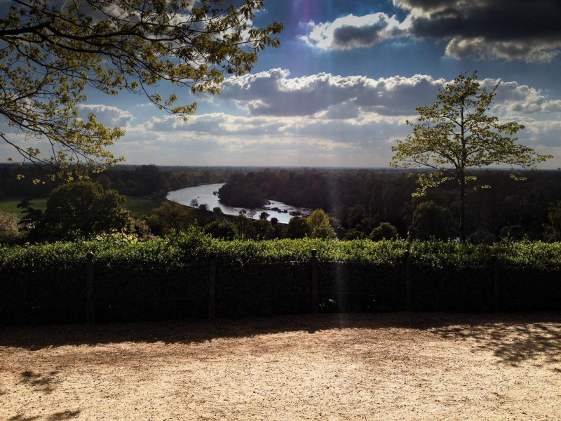 view-of-river-thames-richmond-terrace2