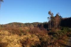 Garbeg-Hill-Loch-Ard-Forest
