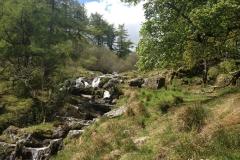 Picnic-spot-near-Pistyll-Rhaeadr-Waterfall-Wales