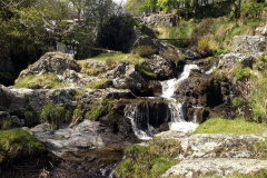Picture-of-streams-feeding-in-to-Pistyll-Rhaeadr-waterfall-Wales
