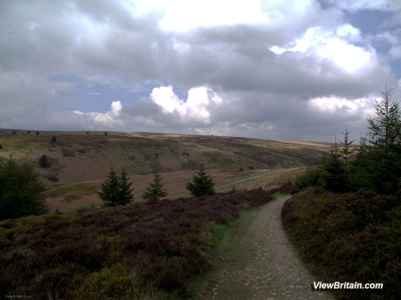 Walk-at-Worlds-End-Denbighshire-Wales