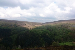 Moorland-at-Worlds-End-Denbighshire-Wales