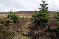Numerous-Walks-at-Worlds-End-Wales