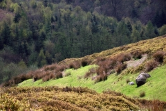 Spectacular-Moorlands-Worlds-End-Wales