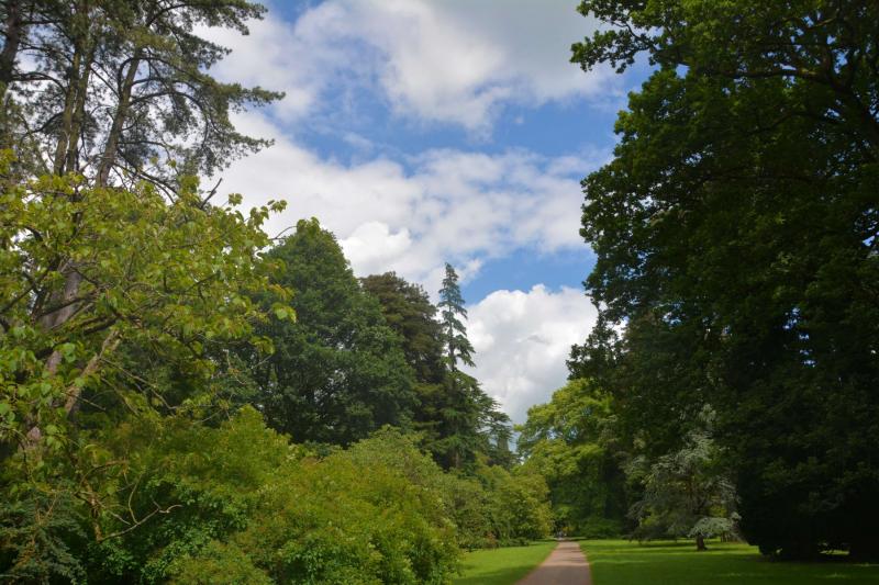 Nature-trail-through-the-park-at-westonbirt-arboretum