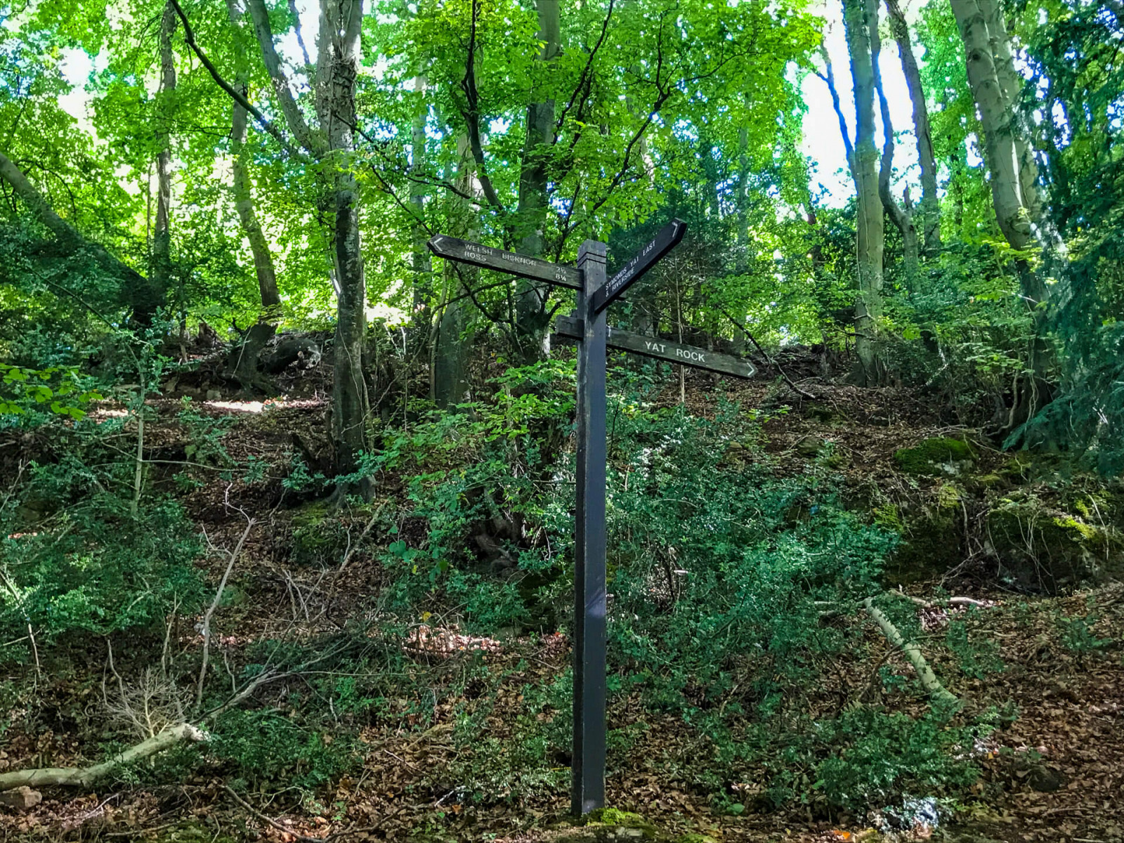 Walk-up-to-yat-rock-sign-post-wye-valley-