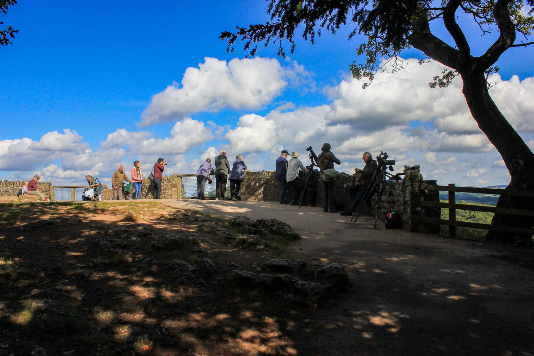 photographers-taking-pictures-of-peregrine-falcons-on-symonds-yat-wye-valley