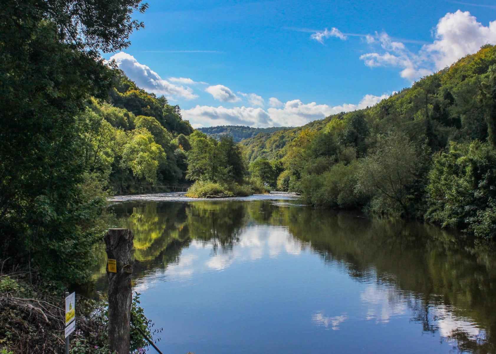 small-island-on-river-wye-symonds-yat-east