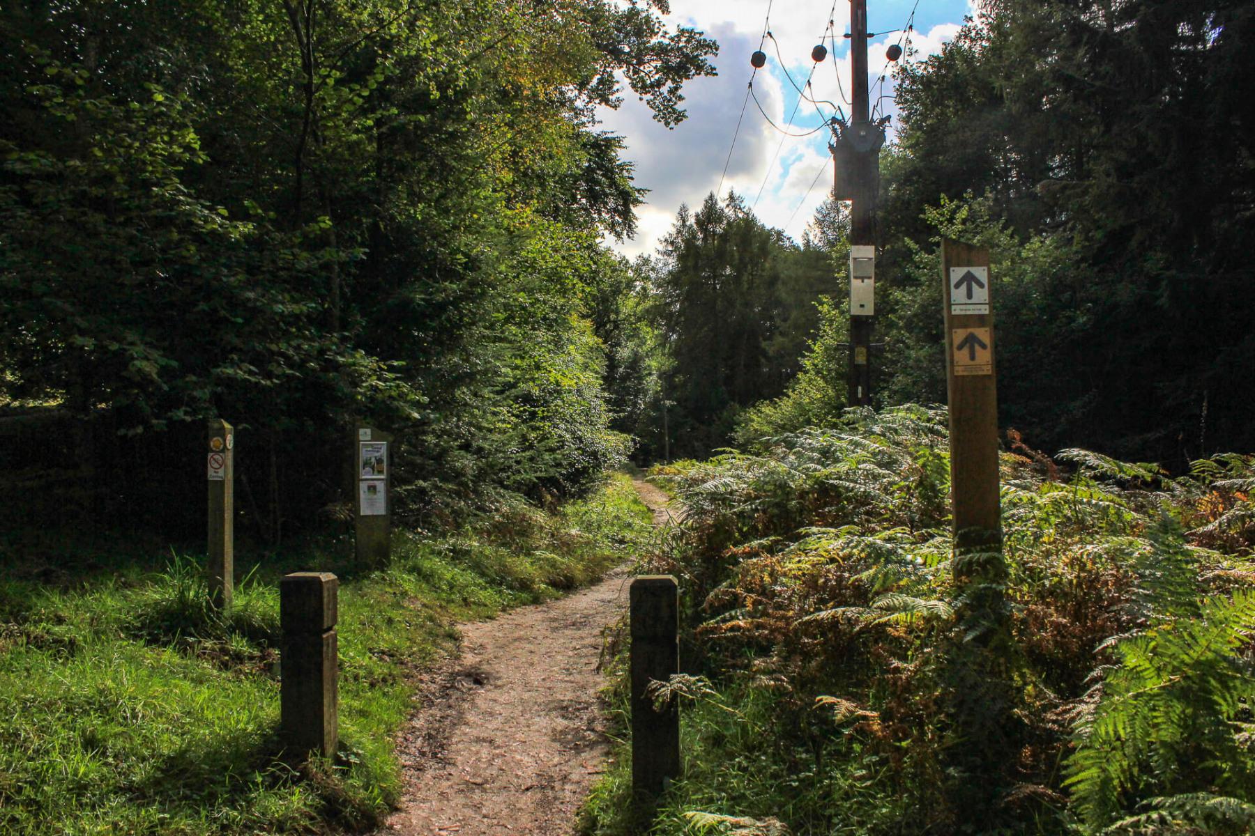 symonds-yat-trail-walk-path-signpost