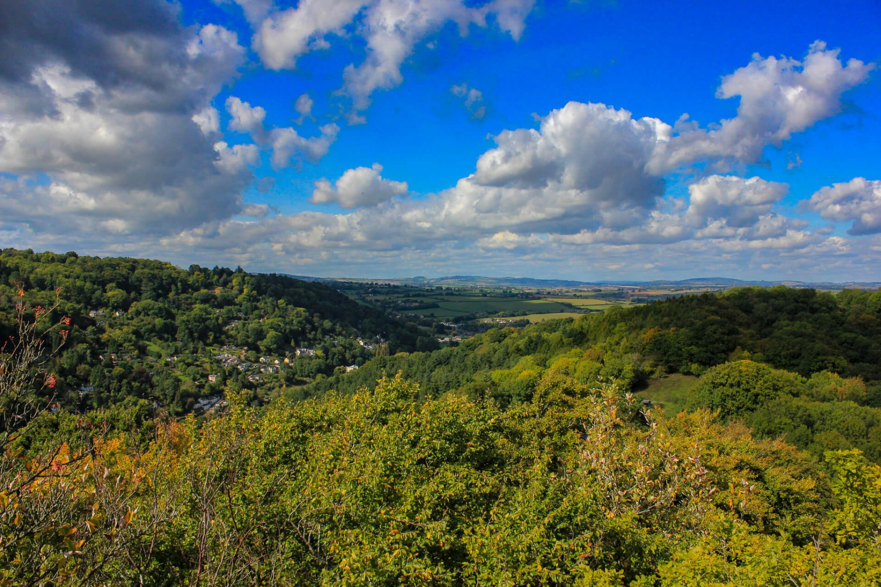view-of-woodlands-from-symonds-yat-rock
