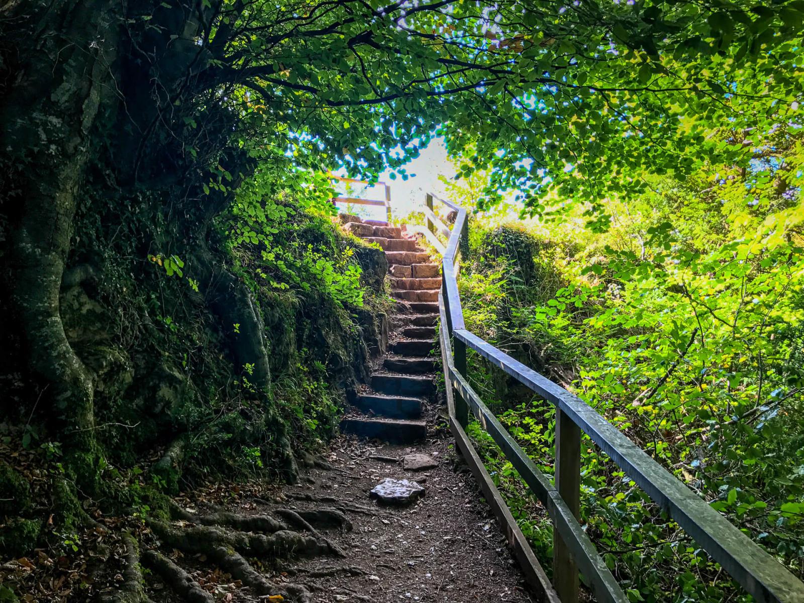 walk-up-to-yat-rock-final-steps-from-riverside