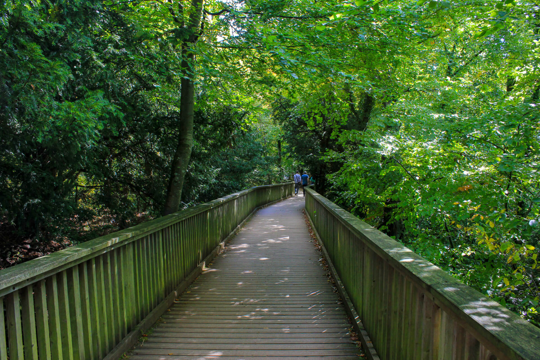 wooden-footbridge-near-yat-rock-wye-valley