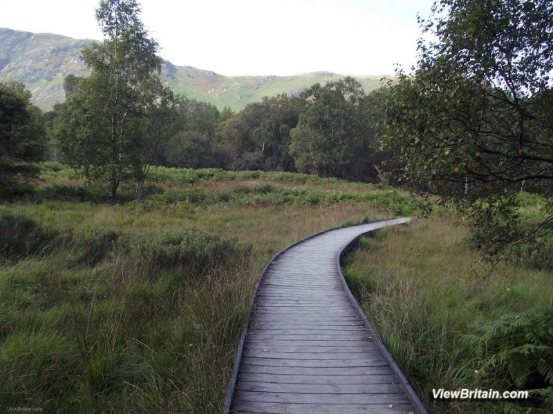 Walk-from-High-Brandel-How-to-Ashness-Gate-Keswick