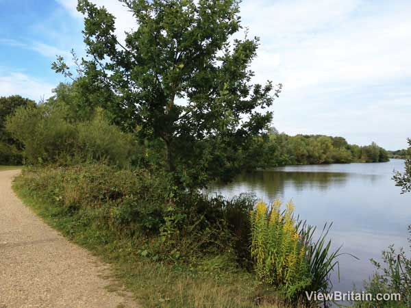 Dinton Pastures Country Park – Berkshire