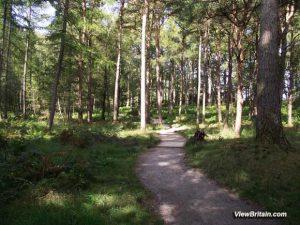 Shorter walk around Derwentwater Lake