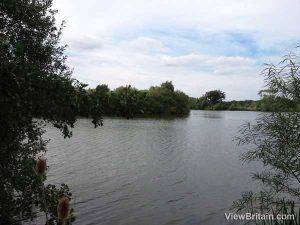 Fishing at Dinton Pastures Country Park