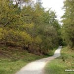 Details of the Walking Route around Tarn Hows – Lake District