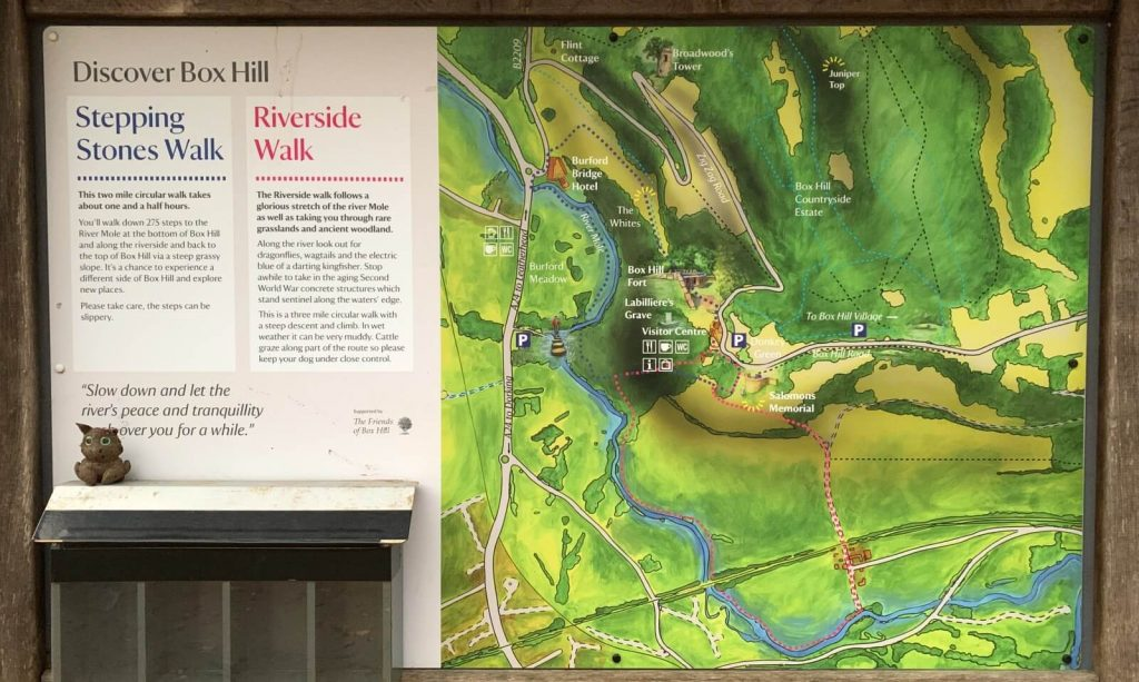 Box-hill-Stepping-stones-and-riverside-walk-map