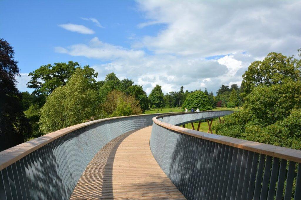 Central-view-of-the-treewalk-at-westonbirt-arboretum