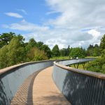 5 Reasons Why Westonbirt Arboretum Is the Perfect Place to Reconnect with Nature