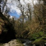 Lydford Gorge – The Deepest Gorge in South West of England