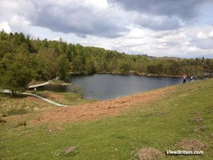 Tarn Hows Lake – Tourist Information and Pictures