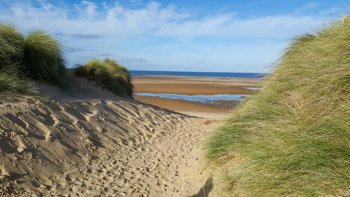 Read more about the article A Complete Guide to Wells-next-the-Sea